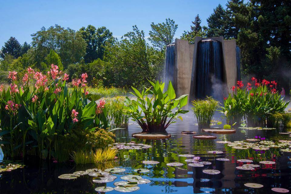The Botanic Gardens This